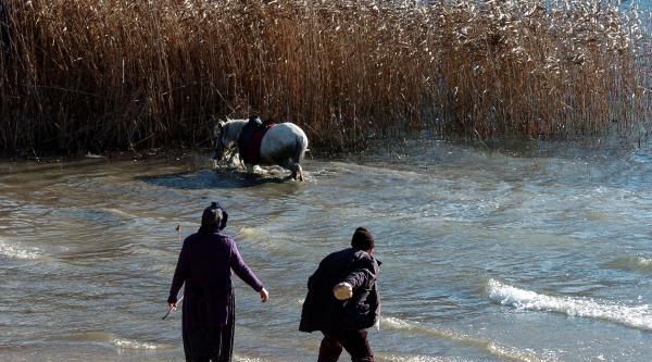 Abant'ta At Kaçti, Köylüler Kovaladi