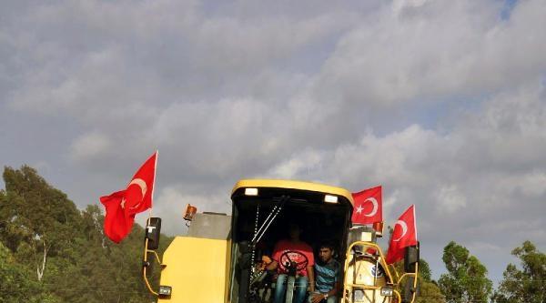 Adana'da Buğday Kaybı Yüzde 30