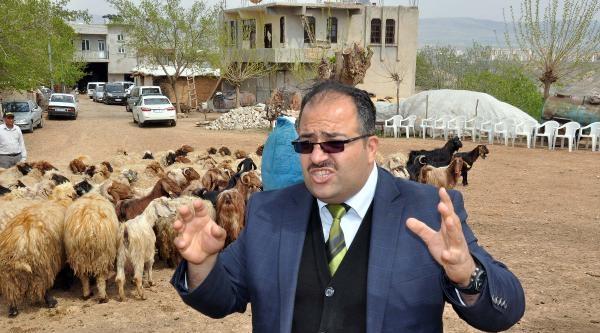 Adıyaman'da 46 Kişiye Çobanlik Sertifikası