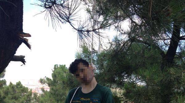 Adıyaman'dan Geldi, Gebze'de Ağaca Asılı Cesedi Bulundu