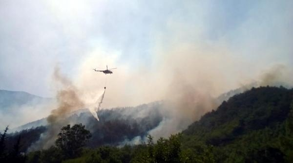 Adrasan Turizm Bölgesinde Orman Yangını (2)