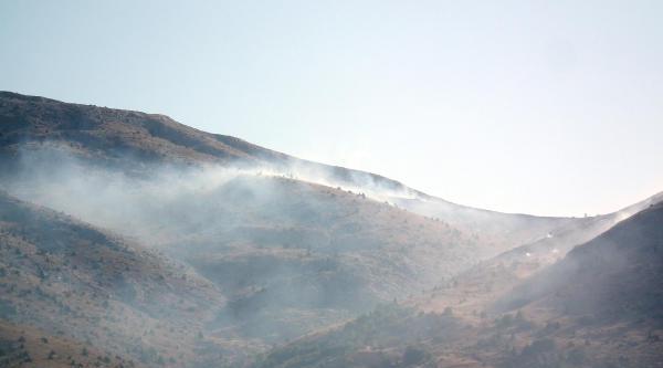 Afşin'de 5 Hektar Ormanlık Alan Küle Döndü