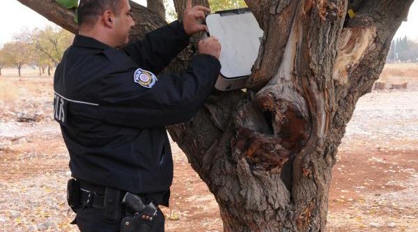 Ağaç Dallari Arasindaki Yazici Bomba Korkusu Yaşatti