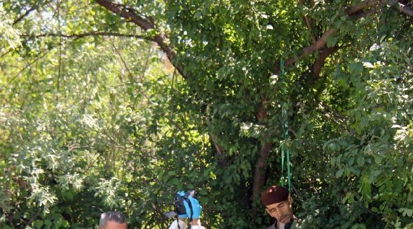 Ağaca Asılı Cesedi Bulundu