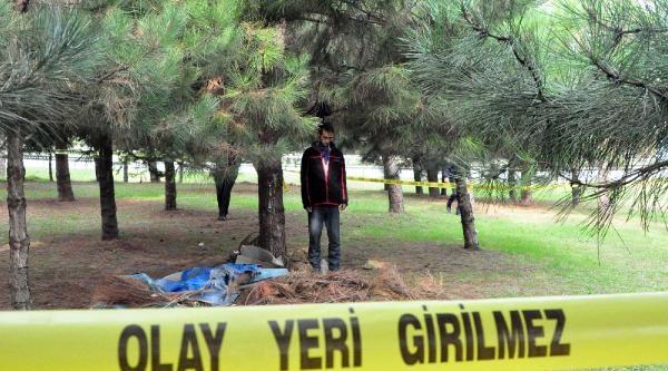Ağaçta Cesedi Bulunan Kişinin Emir Akpinar Olduğu Saptandi