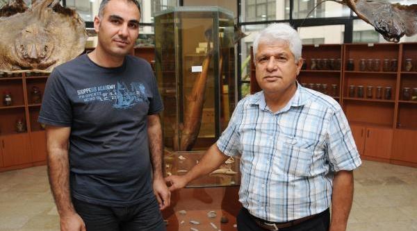 Akdeniz'de 21 Tür Kikirdakli Balik 'kirmizi Liste'de
