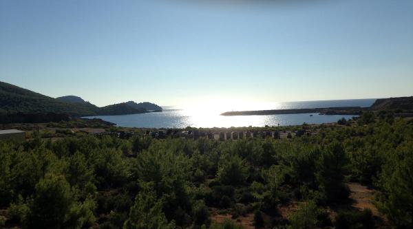 Akkuyu Çed Raporu Yeniden Bakanlığa Sunuldu