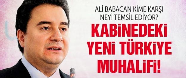 Ali Babacan yeni hükümetteki 'yeni Türkiye muhalifidir!