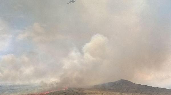Aliağa'da Orman Yangını