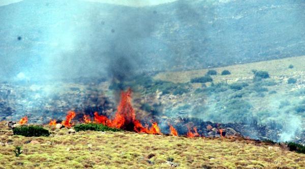 Aliağa'da Orman Yangını - Ek Fotoğraflar