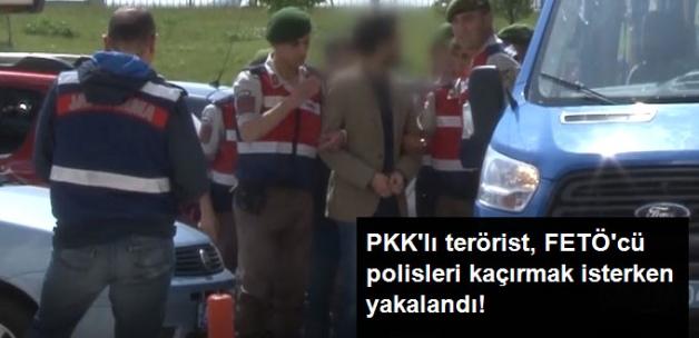 PKK'lı Terörist, Bulgaristan'a Kaçırmaya Çalıştığı FETÖ'cü Polislerle Birlikte Yakalandı