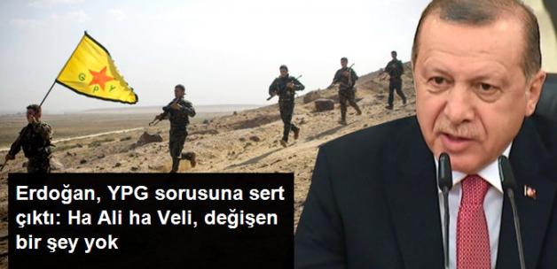 Erdoğan'dan ABD'ye YPG Tepkisi: Ha Ali ha Veli, Dostlar Birbirini Aldatmamalı