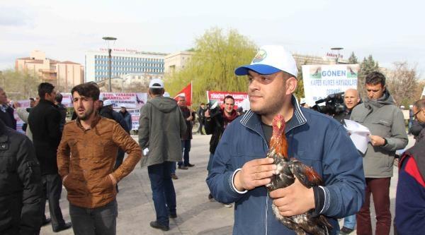 Ankara'da Hayvan Hakları Koruma Kanun Tasarısı Eylemi