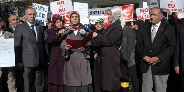 Anne Sütü Ile Ilgili Konferansi  Protesto Ettiler