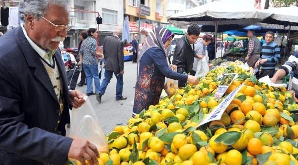 Antalya Bürosu'nun Bölge Haberleri (1)-Ek Fotoğraflar