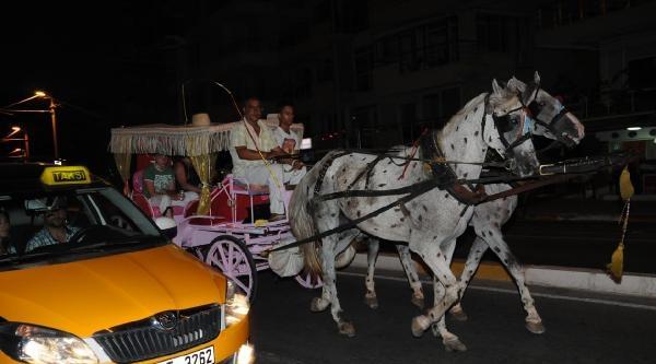 Antalya'da Boyalı At Skandalı - Ek Fotoğraflar
