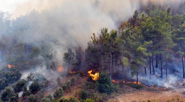 Antalya'da Orman Yangini 2'ye Katlandi, 1305 Hektarlik Alan Yandi