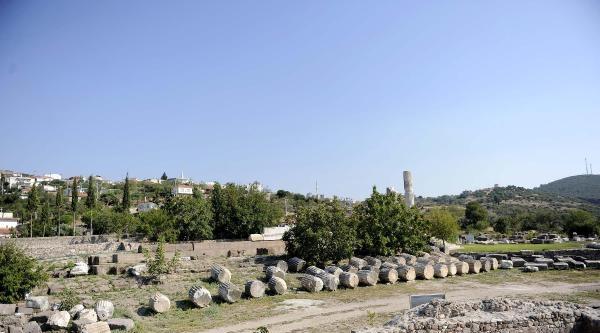 Apollon Smintheus Ayağa Kalkıyor