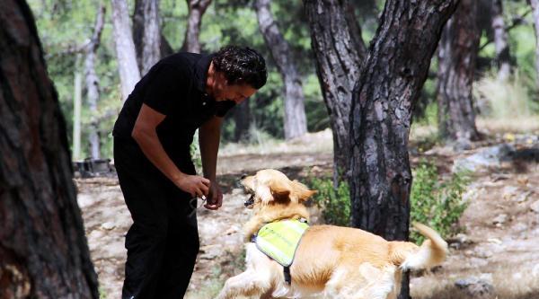 Arama Kurtarma Köpekleri Göreve Hazır