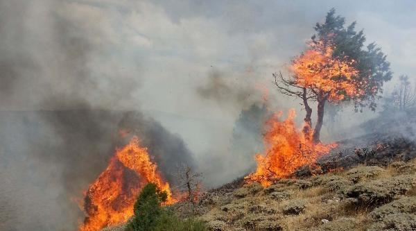 Arazi Yangını Güçlükle Kontrol Altına Alındı