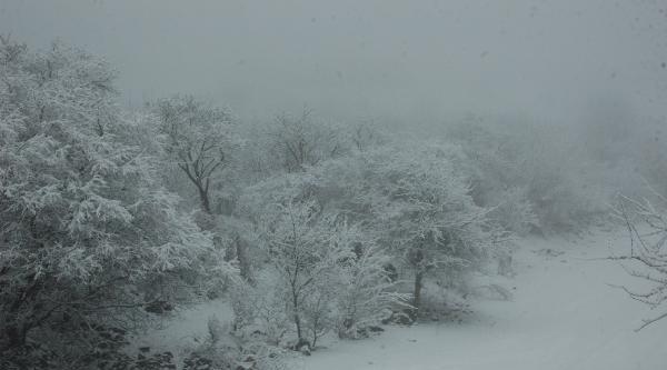 Ardahan'a Kar Yağdı, Sis Çöktü