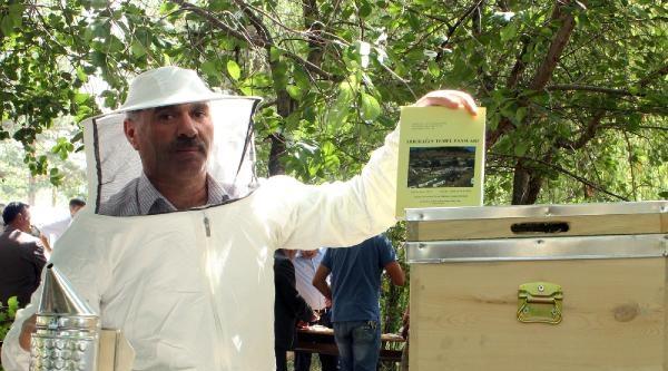 Arıcılara Kurs: 1 Kovandan 30 Kilo Bal Alınabilir