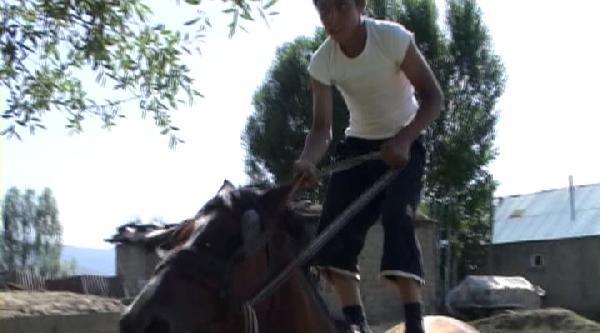 At Cambazı Faruk, Jokey Olmak İstiyor