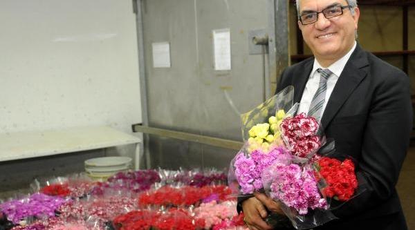 Avrupali Noel'i Türk Çiçeğiyle Kutlayacak