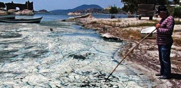 Bafa Gölü'nde şaşkına çeviren görüntü...