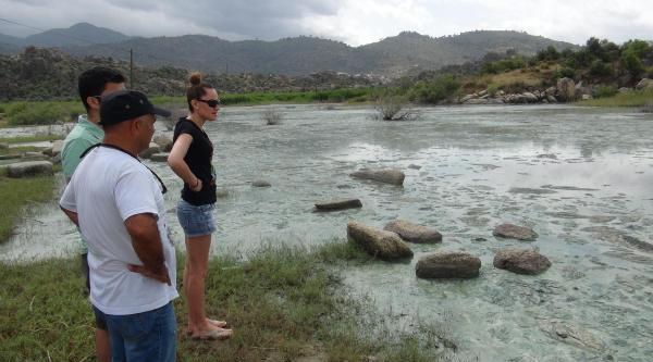 Bafa Gölü'ndeki Kirlilik Balıkçılardan Sonra Turizmcileri De Bitirdi