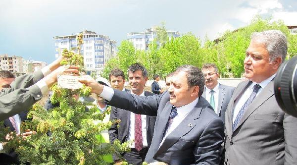 Bakan Eroğlu Ağrı'da 'soma 13 Mayıs Madenciler İlkokulu'nun Açılışını Yaptı