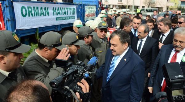 Bakan Eroğlu, Muğla'da 16 Temel Atıp, 4 Açılış Yaptı