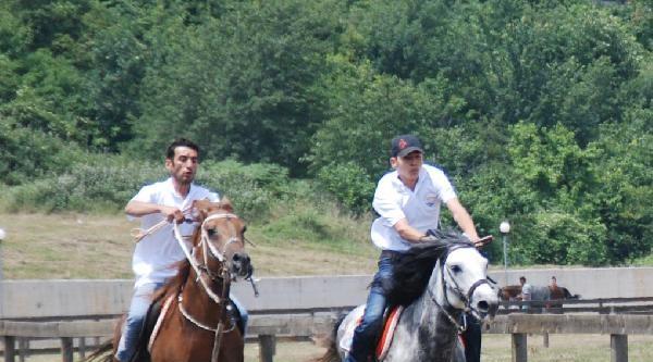 Bakan Fikri Işik'a Yarış Atı Hediye Edildi
