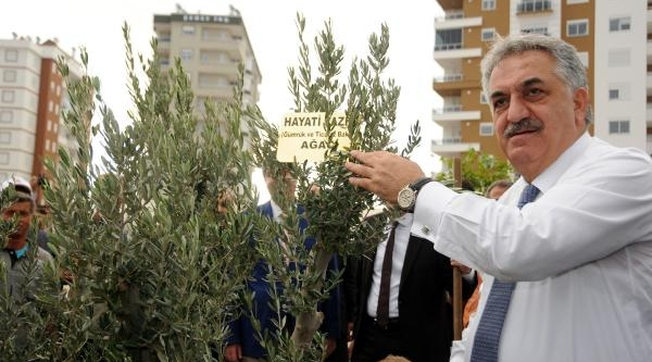 Bakan Yazici: Sebze Meyvede Yilda 50 Milyarlik Kayip Var (2)