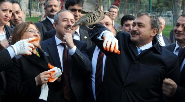 Bakanlar Eroğlu Ve Şahin, Araban'da 185 Milyonluk 10 Tesisin Temelini Atti (2)