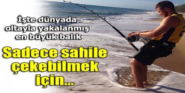 Balıkçılar dehşete düştü!