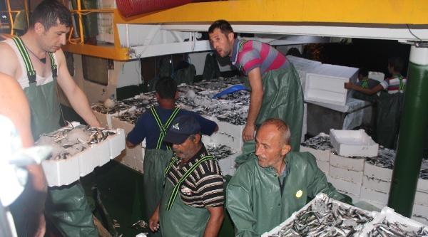 Bandırma'da 2 Tekne 700 Kasa Balıkla Limana Döndü