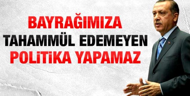 Başbakan Erdoğan'dan BDP'ye bayrak tepkisi!