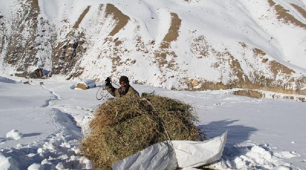 Başkale'de Çiftçilerin Kış Çilesi Bitmedi