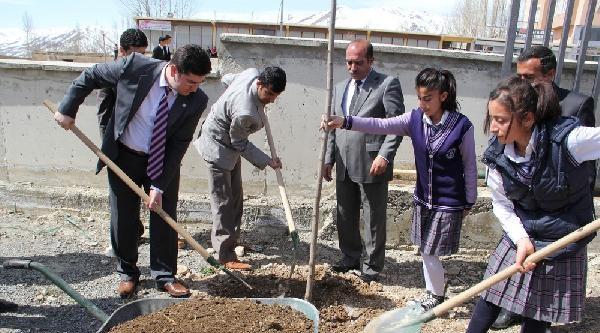 Başkale'deki Okul Bahçelerine 2 Bin Fidan Dikildi