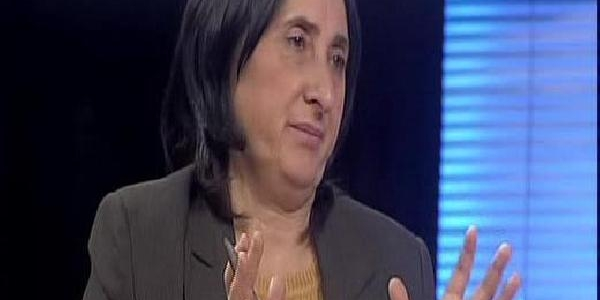 Bdp'li Aydoğan: Düşmanlik Yapacaksaniz, 'düşman' Gibi Yapin