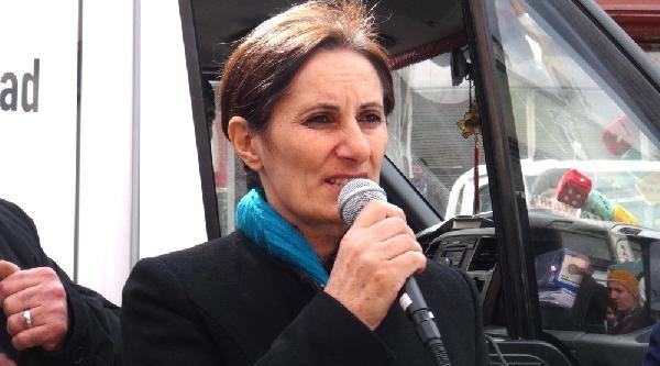 Bdpli Birtane: Berkin'e Türkiye Yandı