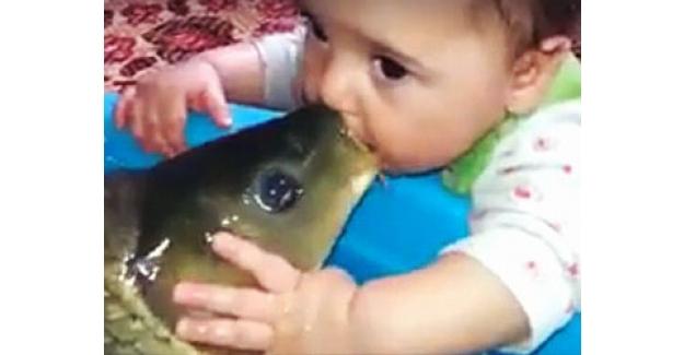 Bebeğin Balık Sevgisi.. :) ( Mutlaka İzlemelisiniz.. )