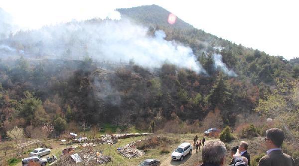 Bilecik'te Orman Yangını (2)