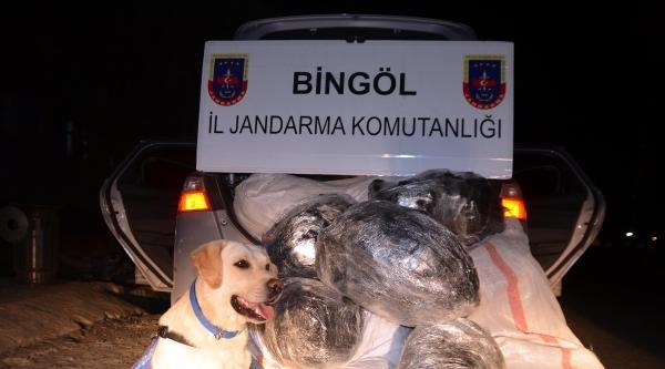 Bingöl Ve Elazığ'da Esrar Operasyonları