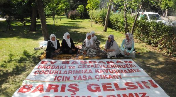 Bir Grup Pkk'lı Annesi De Diyarbakır Valiliği Karşısında Oturma Eylemi Başlattı (2)