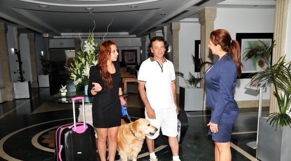 Bodrum'da Hayvan Dostu Otel Sayısı 2'ye Çikti