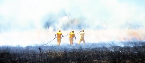 Bodrum'da Makilik Alanda Yangın Korkuttu