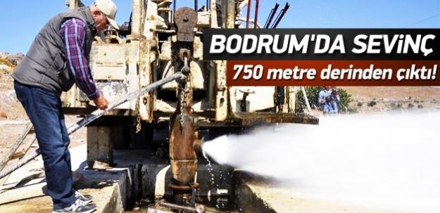 Bodrum'da sevinç: 750 metre derinlikte bulundu
