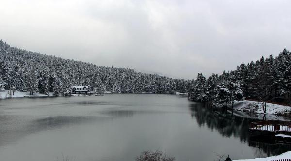Bolu'da Kar Yağışı (2)